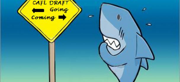 Draft time mixed emotions for MAKOS